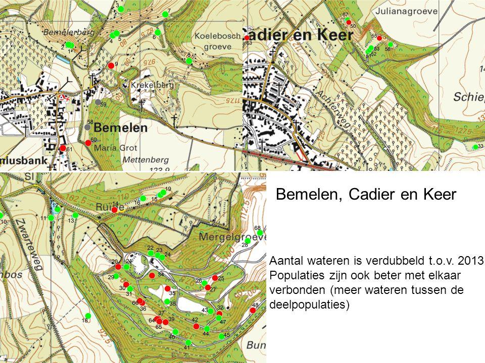 Bemelen, Cadier en Keer Aantal wateren is verdubbeld t.o.v. 2013 Populaties zijn ook beter met elkaar verbonden (meer wateren tussen de deelpopulaties