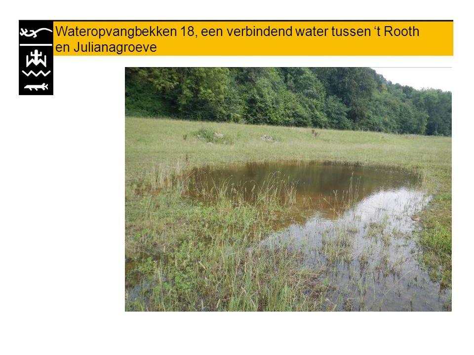 Wateropvangbekken 18, een verbindend water tussen 't Rooth en Julianagroeve