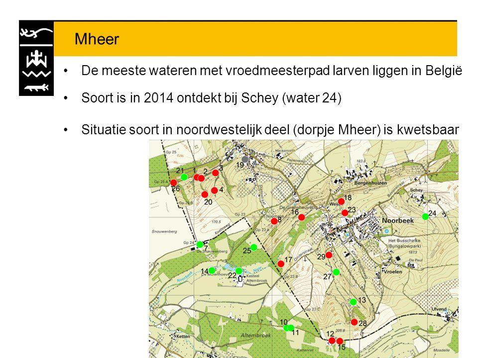 Mheer De meeste wateren met vroedmeesterpad larven liggen in België Soort is in 2014 ontdekt bij Schey (water 24) Situatie soort in noordwestelijk dee