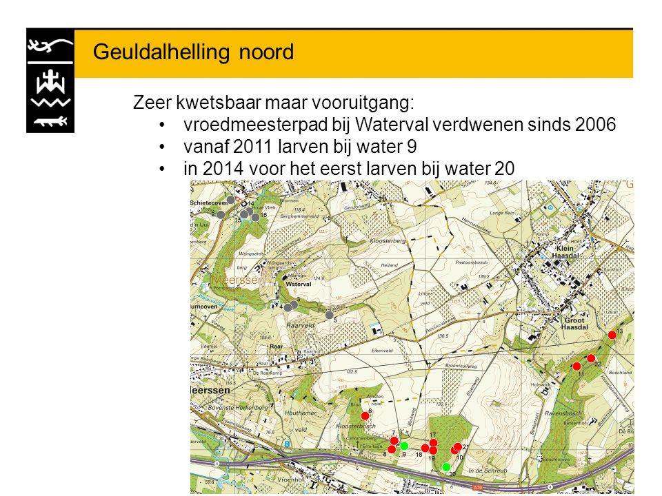 Geuldalhelling noord Zeer kwetsbaar maar vooruitgang: vroedmeesterpad bij Waterval verdwenen sinds 2006 vanaf 2011 larven bij water 9 in 2014 voor het