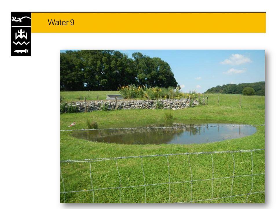 Eckelrade Sinds 2008 verdwenen in noordwestelijk deel (water 23) Soort zal in toekomst mogelijk mee profiteren van herintroductiemaatregelen genomen voor geelbuikvuurpad