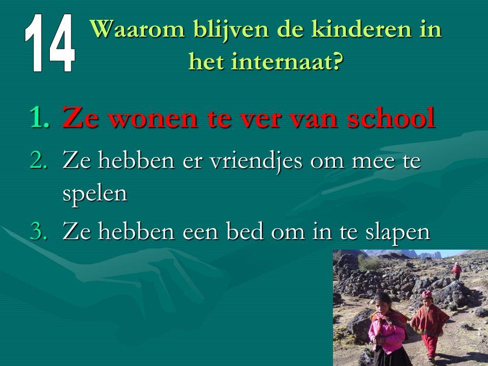 Welke talen leren de kinderen op school? 1.Urdu en Frans 2.Urdu en Engels 3.Urdu en Arabisch