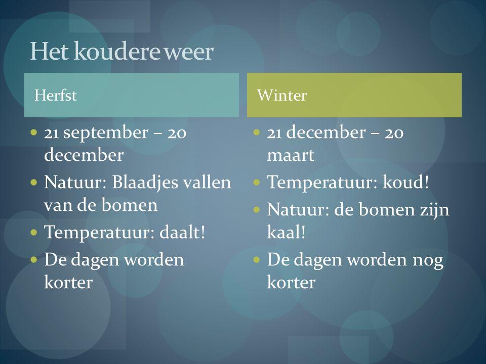 Herfst 21 september – 20 december Natuur: Blaadjes vallen van de bomen Temperatuur: daalt! De dagen worden korter 21 december – 20 maart Temperatuur: