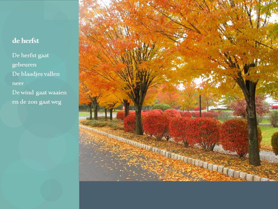 de herfst De herfst gaat gebeuren De blaadjes vallen neer De wind gaat waaien en de zon gaat weg