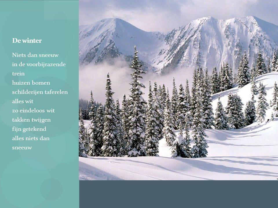 De winter Niets dan sneeuw in de voorbijrazende trein huizen bomen schilderijen taferelen alles wit zo eindeloos wit takken twijgen fijn getekend alles niets dan sneeuw