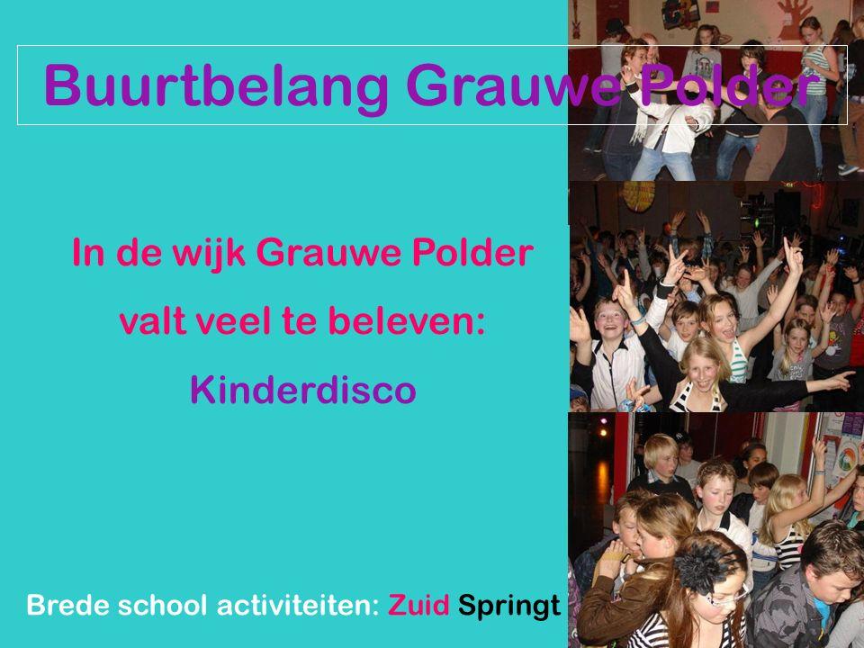Buurtbelang Grauwe Polder In de wijk Grauwe Polder valt veel te beleven: Kinderdisco Brede school activiteiten: Zuid Springt Eruit