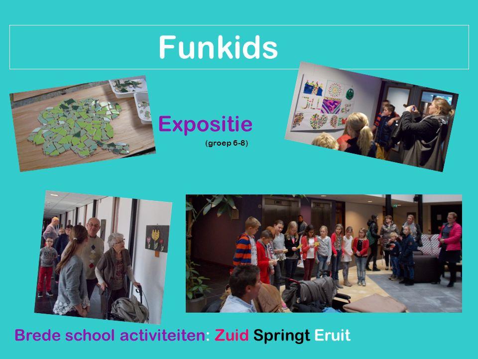 Brede school activiteiten: Zuid Springt Eruit Funkids Expositie (groep 6-8)