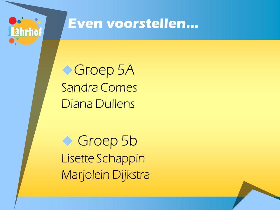 Even voorstellen…  Groep 5A Sandra Comes Diana Dullens  Groep 5b Lisette Schappin Marjolein Dijkstra