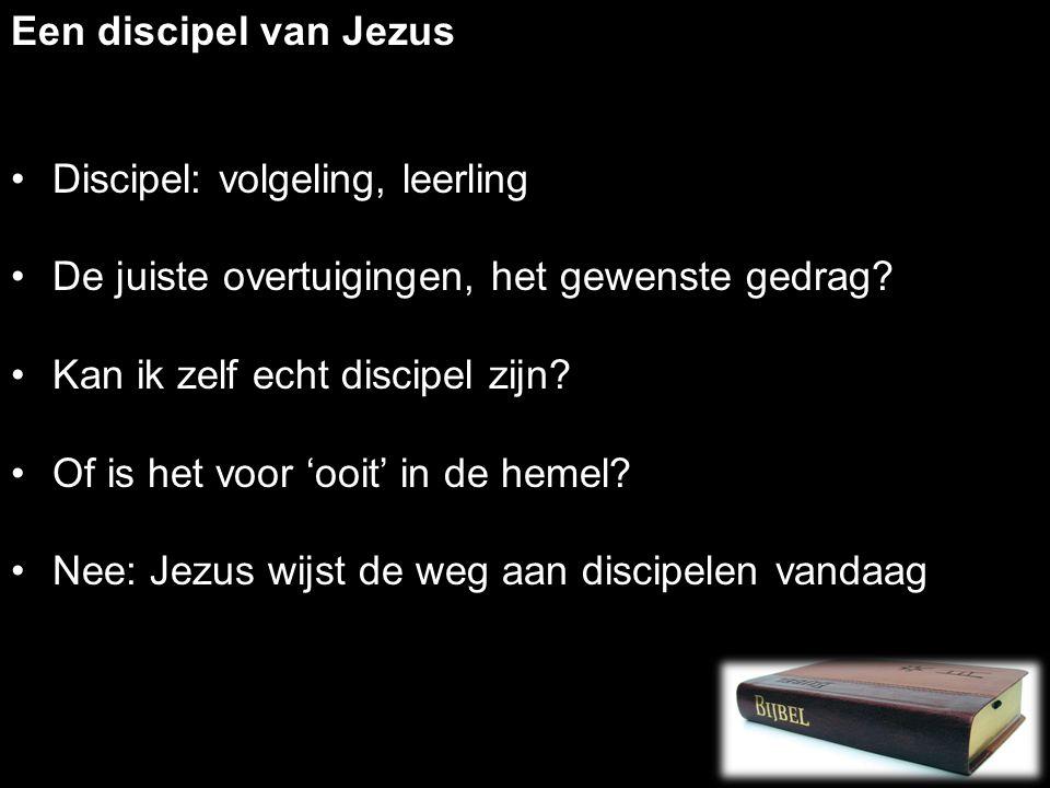 Een discipel van Jezus Discipel: volgeling, leerling De juiste overtuigingen, het gewenste gedrag.