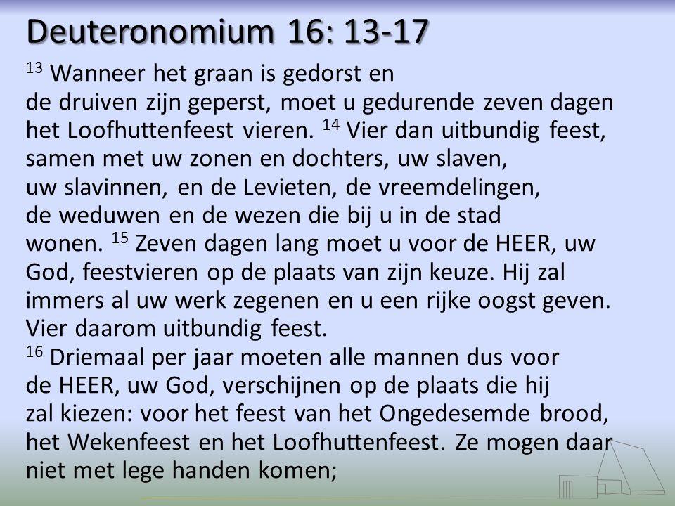 Deuteronomium 16: 13-17 13 Wanneer het graan is gedorst en de druiven zijn geperst, moet u gedurende zeven dagen het Loofhuttenfeest vieren.