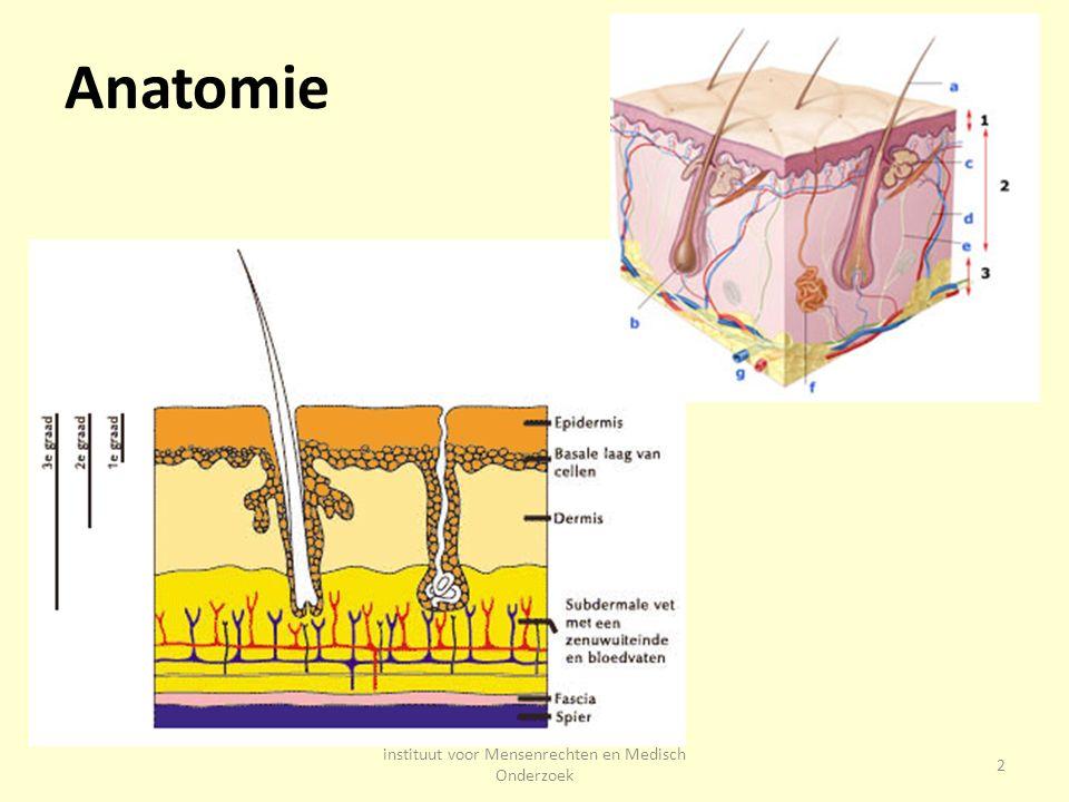 Huid is grootste orgaan Bestaat uit drie lagen 1.Opperhuid (epidermis) – barrière tegen bacterieën, schimmels en virussen en schadelijke stoffen.