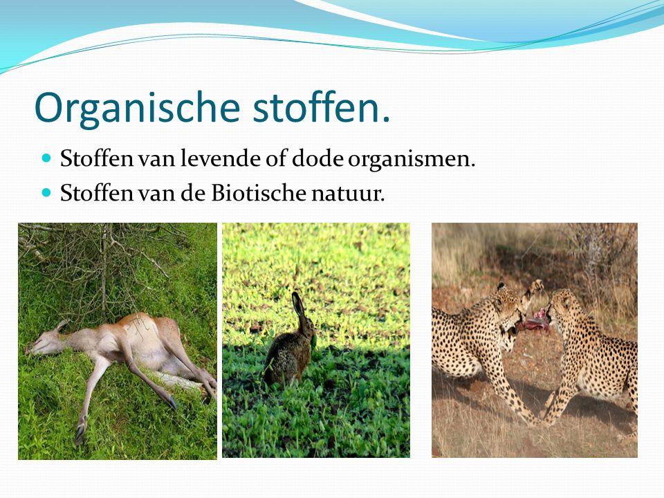 Organische stoffen. Stoffen van levende of dode organismen. Stoffen van de Biotische natuur.