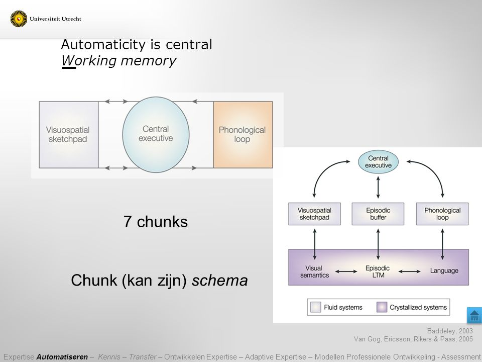 Automaticity is central Working memory Baddeley, 2003 Van Gog, Ericsson, Rikers & Paas, 2005 7 chunks Chunk (kan zijn) schema Expertise Automatiseren – Kennis – Transfer – Ontwikkelen Expertise – Adaptive Expertise – Modellen Professionele Ontwikkeling - Assessment