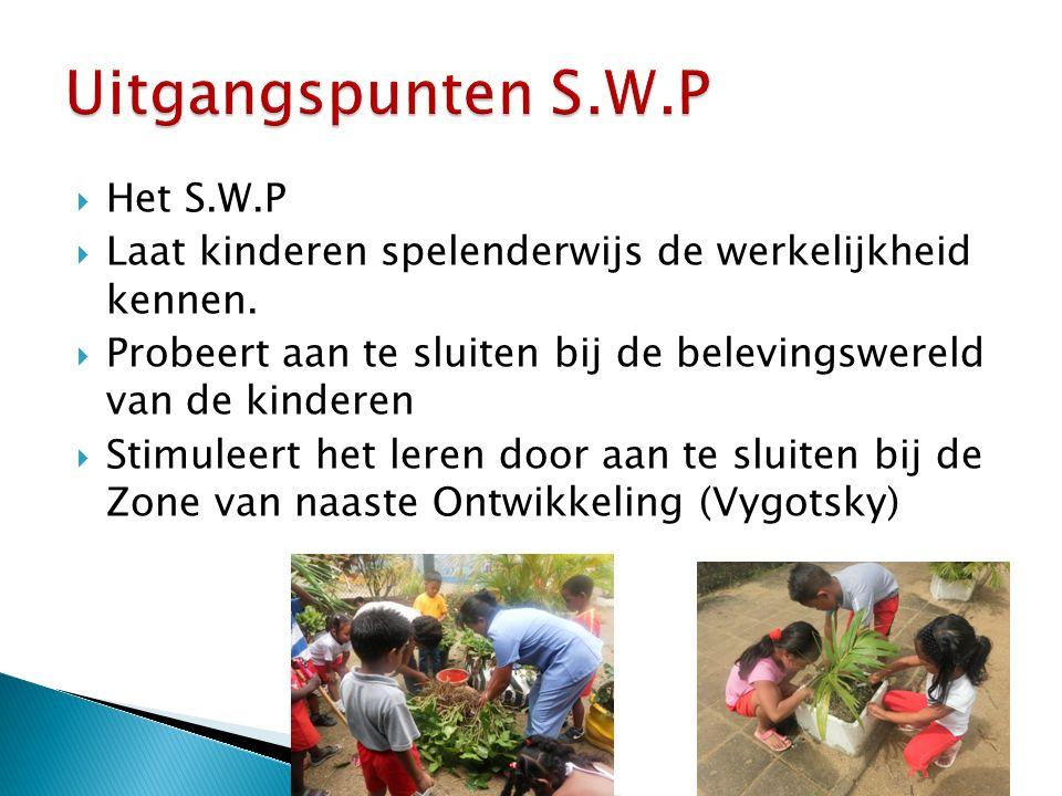  Het S.W.P  Laat kinderen spelenderwijs de werkelijkheid kennen.
