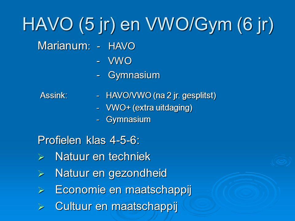 HAVO (5 jr) en VWO/Gym (6 jr) Marianum : - HAVO - VWO - VWO - Gymnasium - Gymnasium Assink: - HAVO/VWO (na 2 jr. gesplitst) Assink: - HAVO/VWO (na 2 j