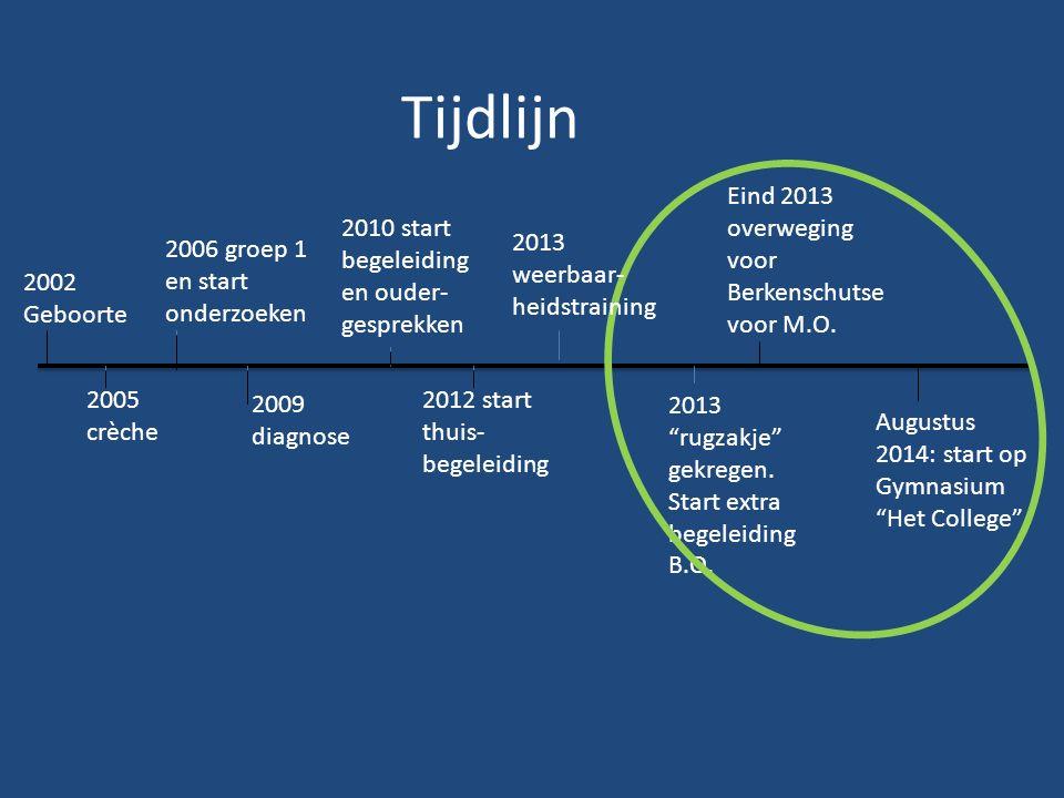 Tijdlijn 2002 Geboorte 2005 crèche 2006 groep 1 en start onderzoeken 2009 diagnose 2010 start begeleiding en ouder- gesprekken 2012 start thuis- begel