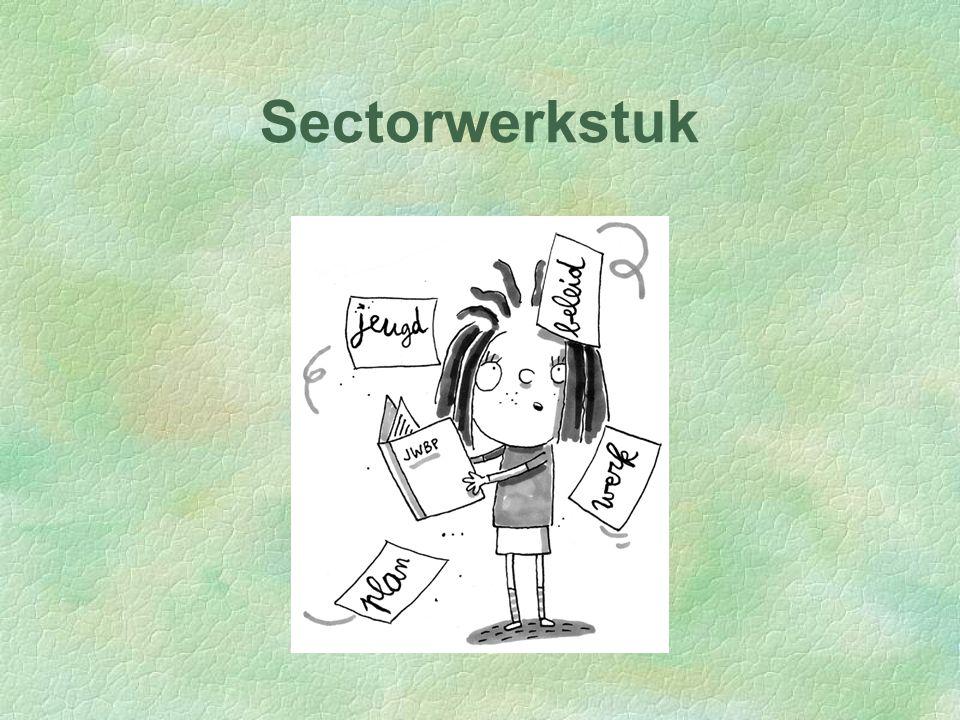 Sectorwerkstuk