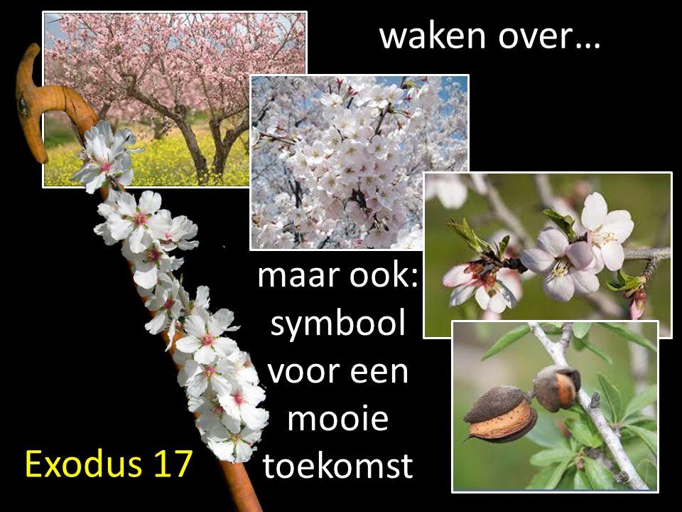 Exodus 17 waken over… maar ook: symbool voor een mooie toekomst