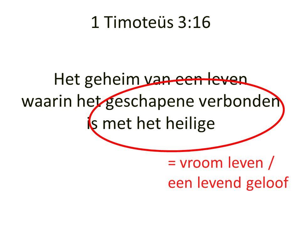 Het geheim van een leven waarin het geschapene verbonden is met het heilige = vroom leven / een levend geloof 1 Timoteüs 3:16