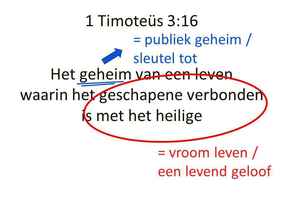 Het geheim van een leven waarin het geschapene verbonden is met het heilige = vroom leven / een levend geloof 1 Timoteüs 3:16 = publiek geheim / sleutel tot