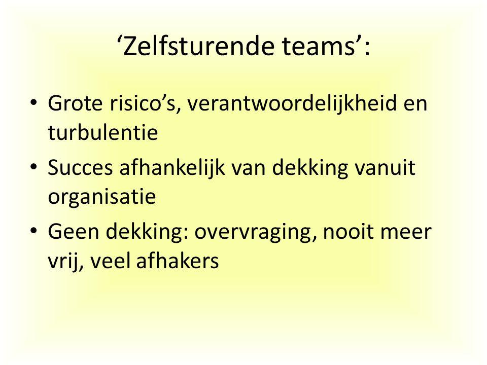 'Zelfsturende teams': Grote risico's, verantwoordelijkheid en turbulentie Succes afhankelijk van dekking vanuit organisatie Geen dekking: overvraging,