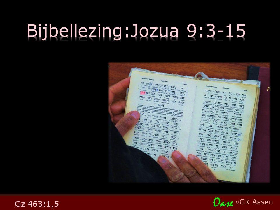 vGK Assen Oase Gz 463:1,5