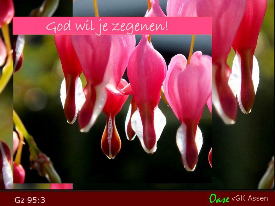 vGK Assen Oase Gz 95:3