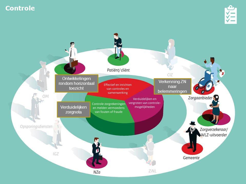 10 Effectief inrichten van controles en samenwerking  Analyse financiële prikkels verzekeraars Verduidelijken en vergroten controle- mogelijkheden 