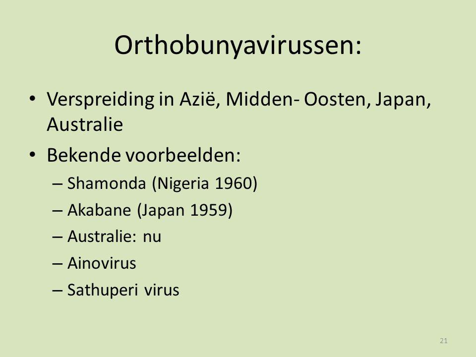 Orthobunyavirussen: Verspreiding in Azië, Midden- Oosten, Japan, Australie Bekende voorbeelden: – Shamonda (Nigeria 1960) – Akabane (Japan 1959) – Australie: nu – Ainovirus – Sathuperi virus 21
