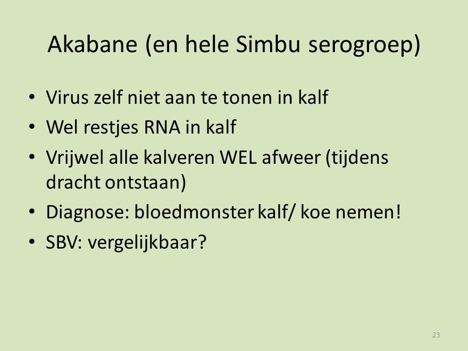 Akabane (en hele Simbu serogroep) Virus zelf niet aan te tonen in kalf Wel restjes RNA in kalf Vrijwel alle kalveren WEL afweer (tijdens dracht ontstaan) Diagnose: bloedmonster kalf/ koe nemen.