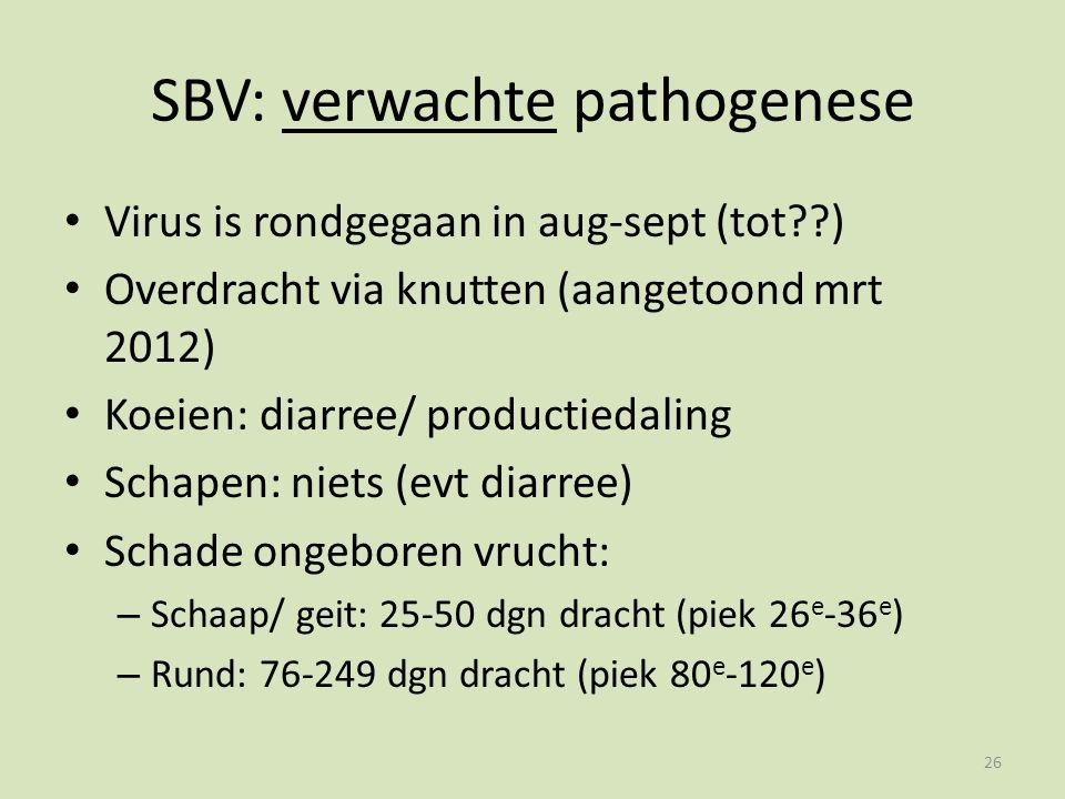 SBV: verwachte pathogenese Virus is rondgegaan in aug-sept (tot ) Overdracht via knutten (aangetoond mrt 2012) Koeien: diarree/ productiedaling Schapen: niets (evt diarree) Schade ongeboren vrucht: – Schaap/ geit: 25-50 dgn dracht (piek 26 e -36 e ) – Rund: 76-249 dgn dracht (piek 80 e -120 e ) 26