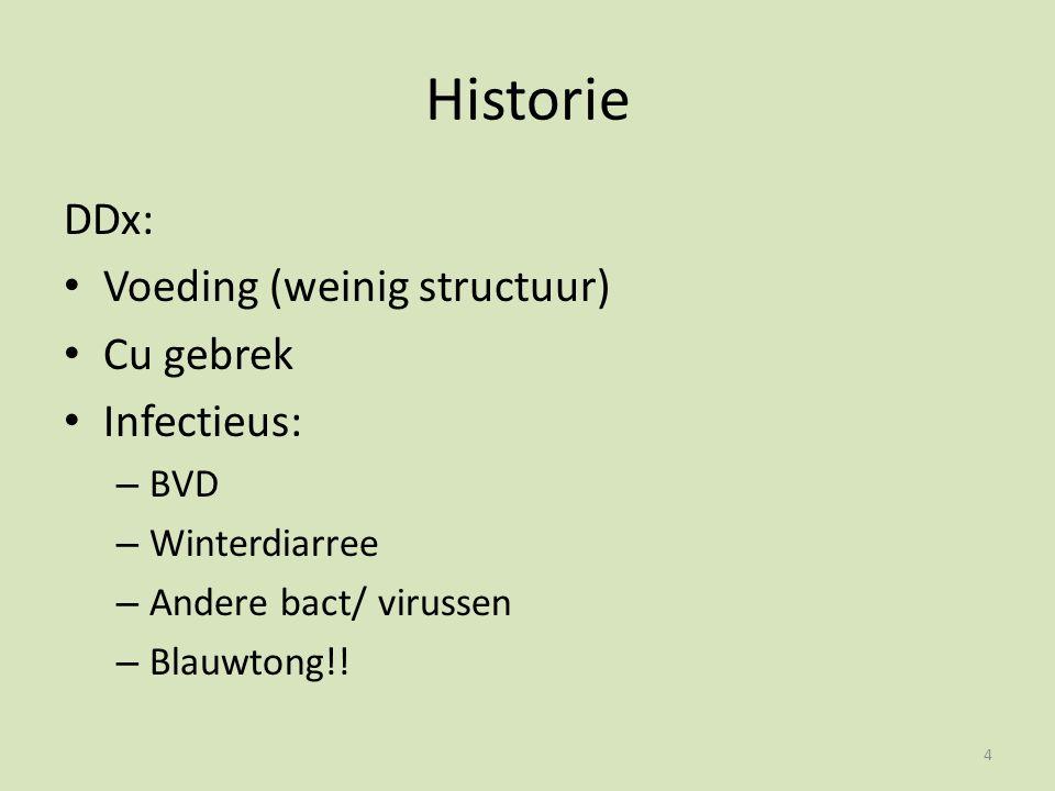 Historie DDx: Voeding (weinig structuur) Cu gebrek Infectieus: – BVD – Winterdiarree – Andere bact/ virussen – Blauwtong!.