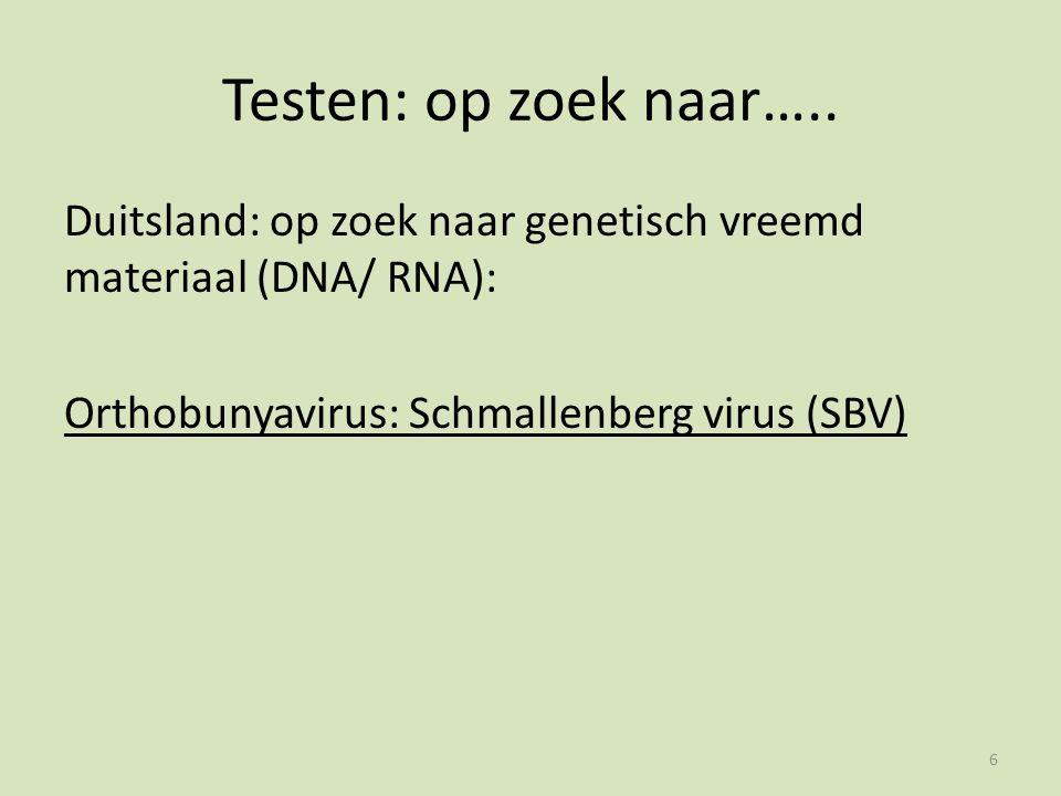 Testen: op zoek naar…..