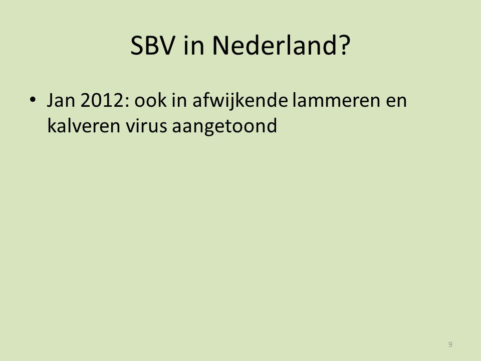 SBV in Nederland? Jan 2012: ook in afwijkende lammeren en kalveren virus aangetoond 9