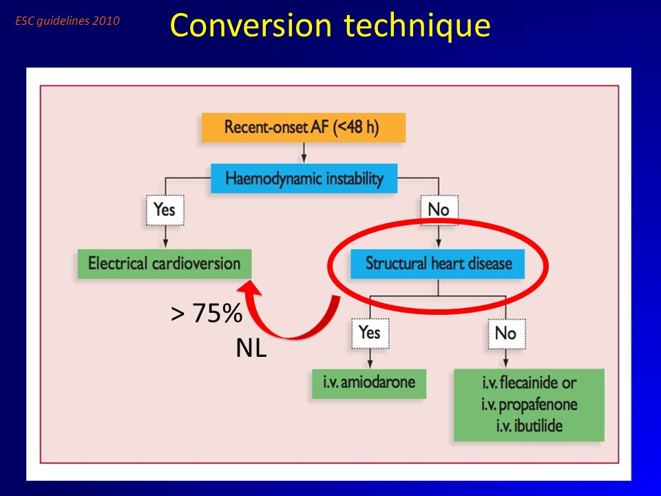 Conversion technique ESC guidelines 2010 NL > 75%
