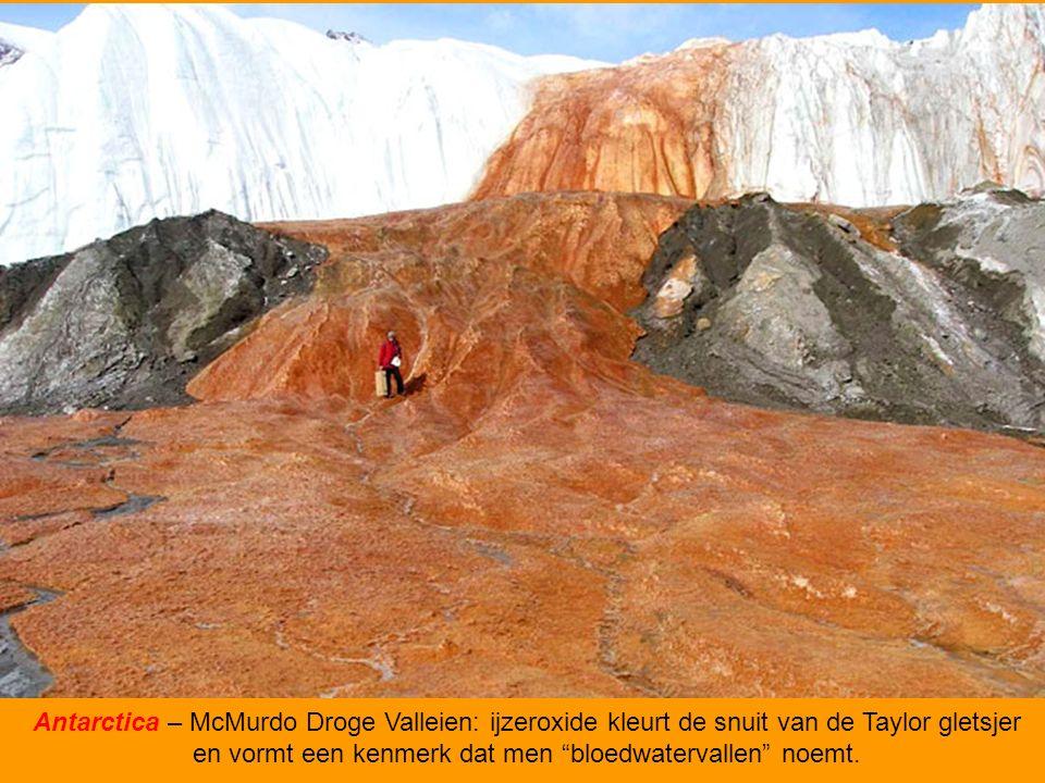 Canada – Gevlekt Meer, een van de hoogste concentraties van mineralen in de wereld.