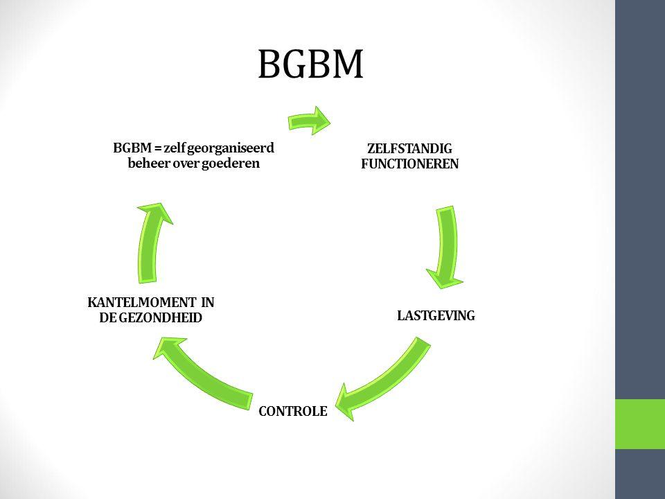 BGBM ZELFSTANDIG FUNCTIONEREN LASTGEVING CONTROLE KANTELMOMENT IN DE GEZONDHEID BGBM = zelf georganiseerd beheer over goederen