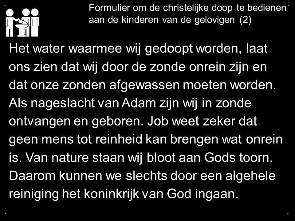 .... Formulier om de christelijke doop te bedienen aan de kinderen van de gelovigen (2) Het water waarmee wij gedoopt worden, laat ons zien dat wij do