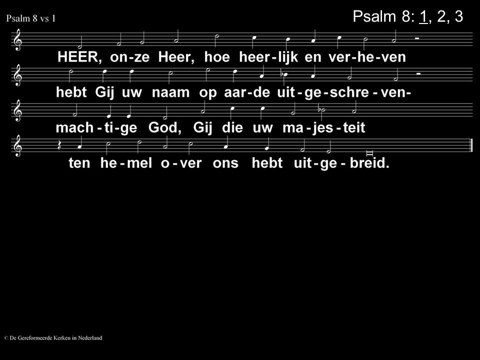 Psalm 8: 1, 2, 3