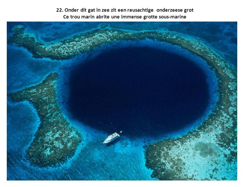 22. Onder dit gat in zee zit een reusachtige onderzeese grot Ce trou marin abrite une immense grotte sous-marine
