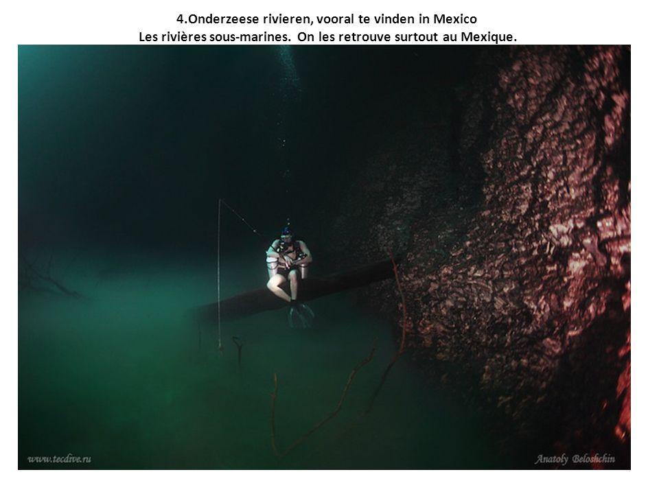 4.Onderzeese rivieren, vooral te vinden in Mexico Les rivières sous-marines. On les retrouve surtout au Mexique.
