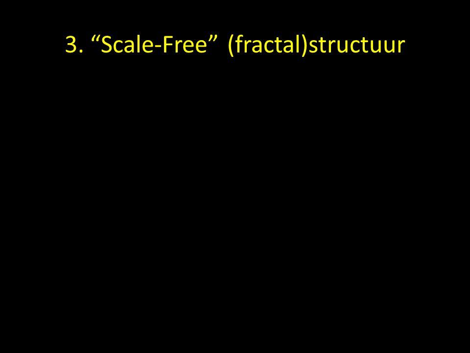 3. Scale-Free structuur Van boven Van opzij Barabasi, 2004