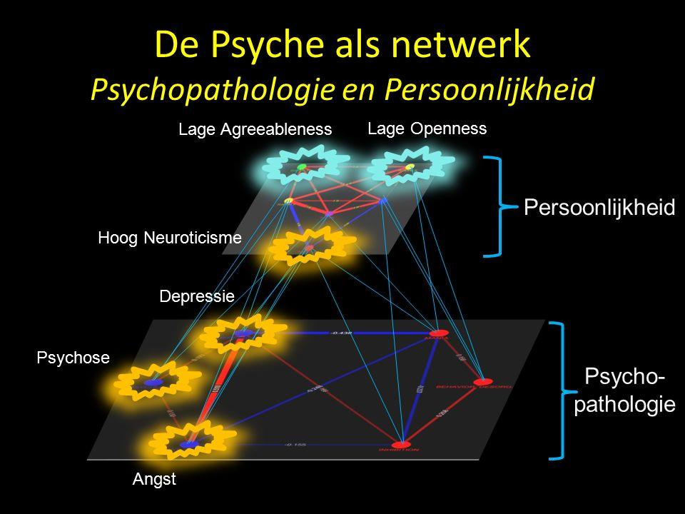 De Psyche als netwerk Persoonlijkheid (As II) Goekoop R., Goekoop J.G, Scholte H.S., PLOS ONE, Dec 2012 Ontwikkelingsprofiel Super-cluster 1: Neuroticisme Conscientieusheid Eerlijkheid = INTERNALISEREND.