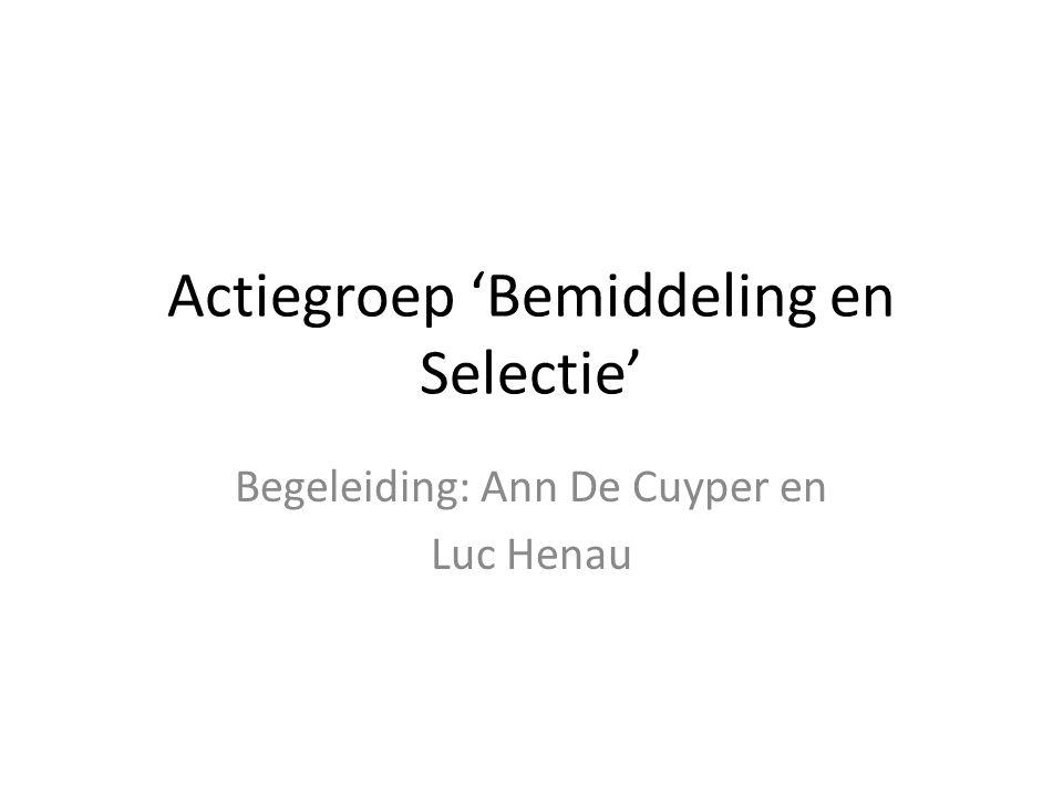 Actiegroep 'Bemiddeling en Selectie' Begeleiding: Ann De Cuyper en Luc Henau