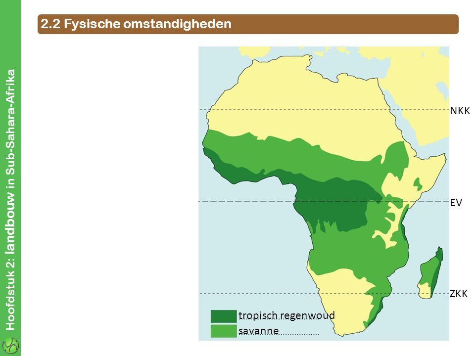Hoofdstuk 2: landbouw in Sub-Sahara-Afrika NKK EV ZKK 2.2 Fysische omstandigheden ZENITALE REGENS tropisch regenwoud savanne