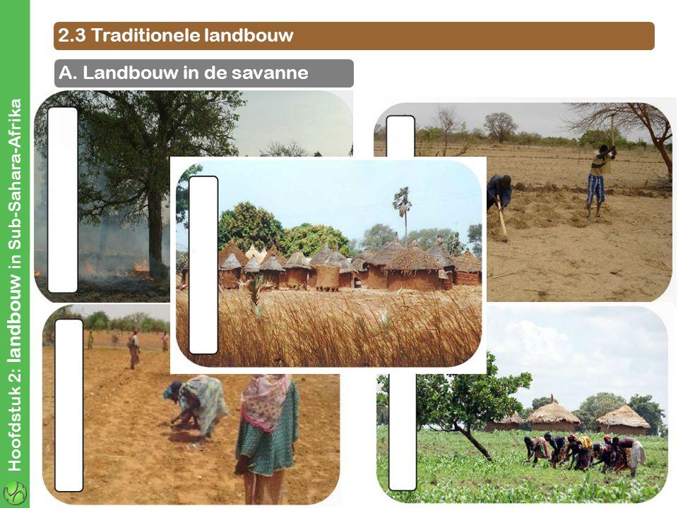 Hoofdstuk 2: landbouw in Sub-Sahara-Afrika 2.3 Traditionele landbouw A. Landbouw in de savanne
