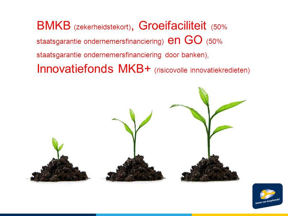 BMKB (zekerheidstekort), Groeifaciliteit (50% staatsgarantie ondernemersfinanciering) en GO (50% staatsgarantie ondernemersfinanciering door banken), Innovatiefonds MKB+ (risicovolle innovatiekredieten)