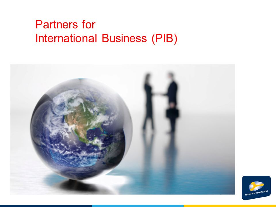 Partners for International Business (PIB)
