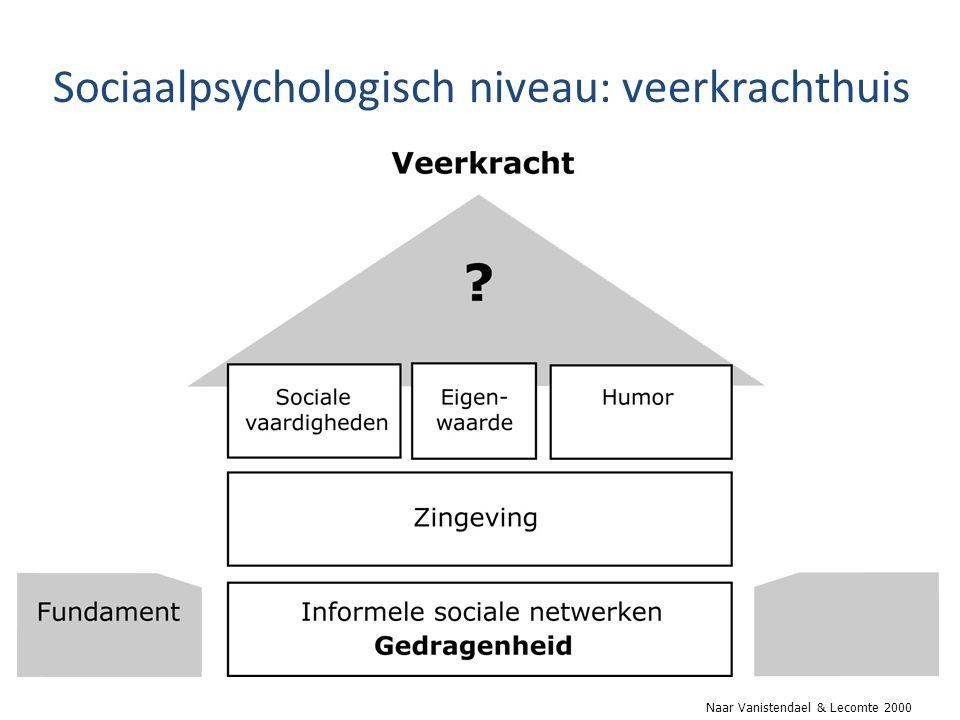 Sociaalpsychologisch niveau: veerkrachthuis Naar Vanistendael & Lecomte 2000