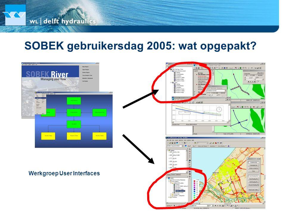 SOBEK gebruikersdag 2005: wat opgepakt? Werkgroep User Interfaces